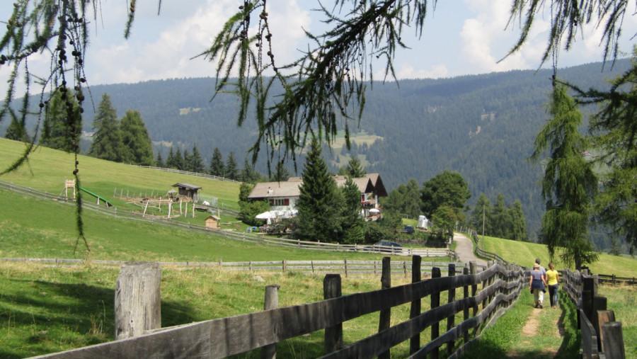 Berggasthof Lanzenschusterhof in Jenesien