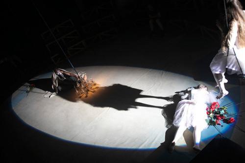 Prove Otello Circus