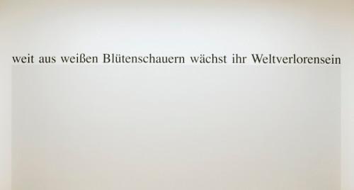 """Haim Steinbach, """"weitausweißenblütenschauernwächstihrweltverlorensein"""""""