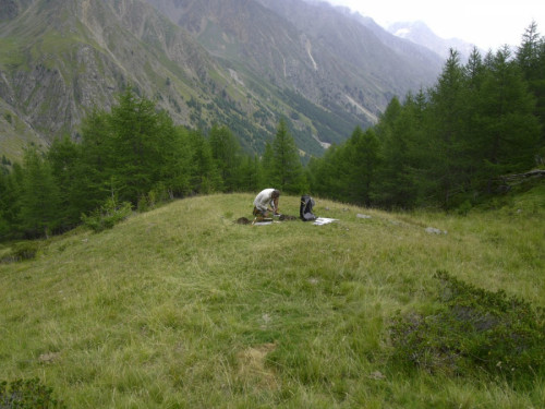 (c) South Tyrol Museum of Archaeology / A. Putzer: Scavi archeologici in Val di Fosse 2018